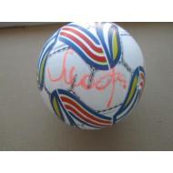 Футбольный мяч с автографом Александра Мостового (автограф: Александр Мостовой)